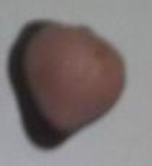 2011112917550000